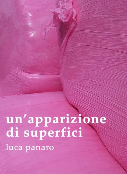 UN'APPARIZIONE DI SUPERFICI Incontro con Luca Panaro ed Eloisa D'Orsi