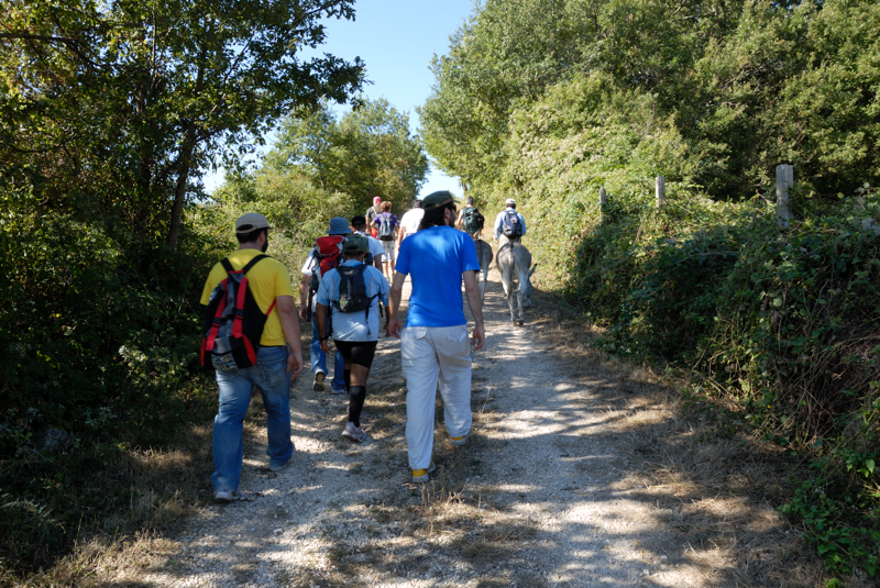 Giro delle More - da Casalbore (AV) al lago di San Giorgio la Molara (BN)